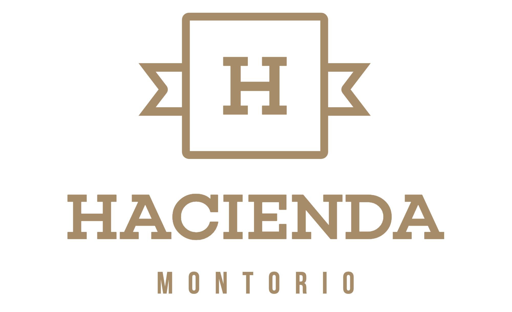 Casa Rural 4**** Hacienda Montorio