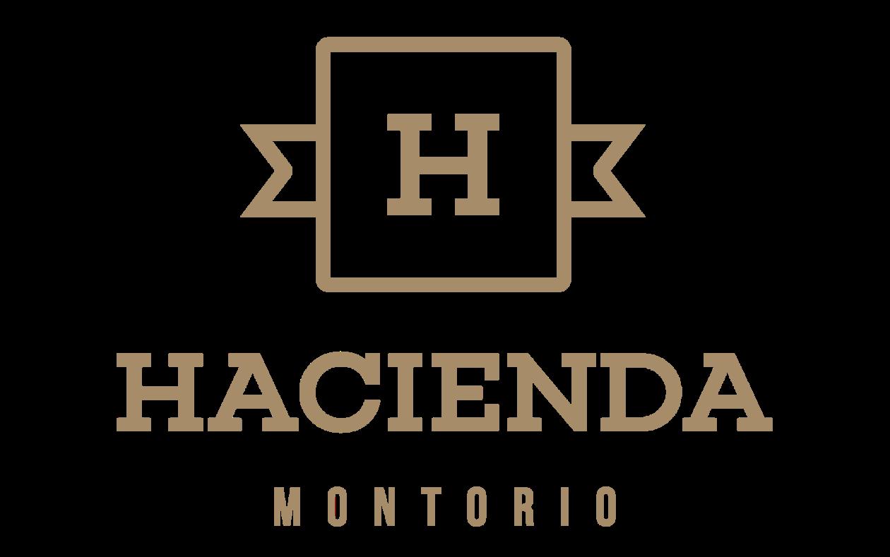 Casa Rural 4**** Hacienda Montorio en Burgos tel 629418896